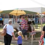 Marquette County Fair August 9 2014 001