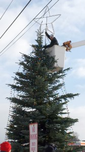 Luke Noordyk topped the tree with a brand new star