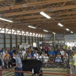 Steer sale during the Livestock Auction at the Marquette County Fair