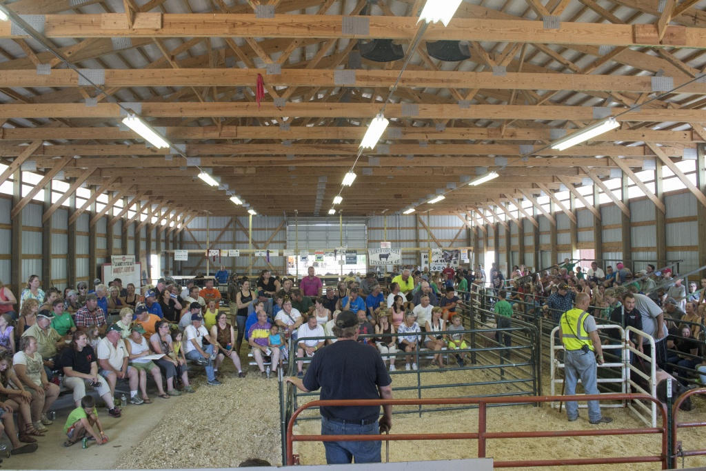 Crowd at the Livestock Auction During the Marquette County Fair