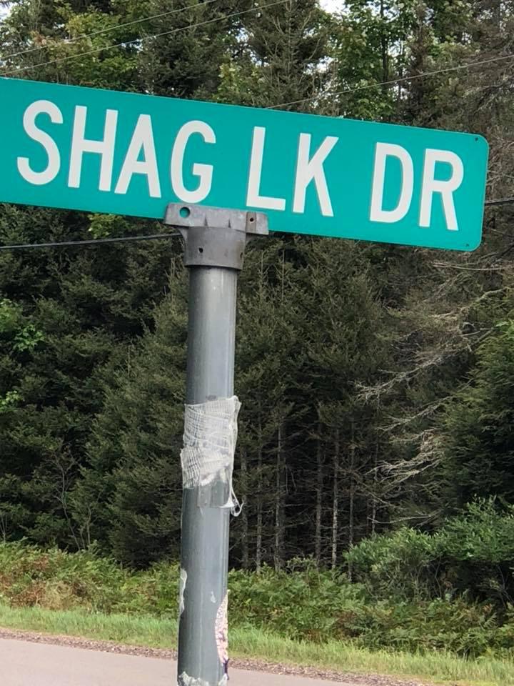 Shag Lake Drive