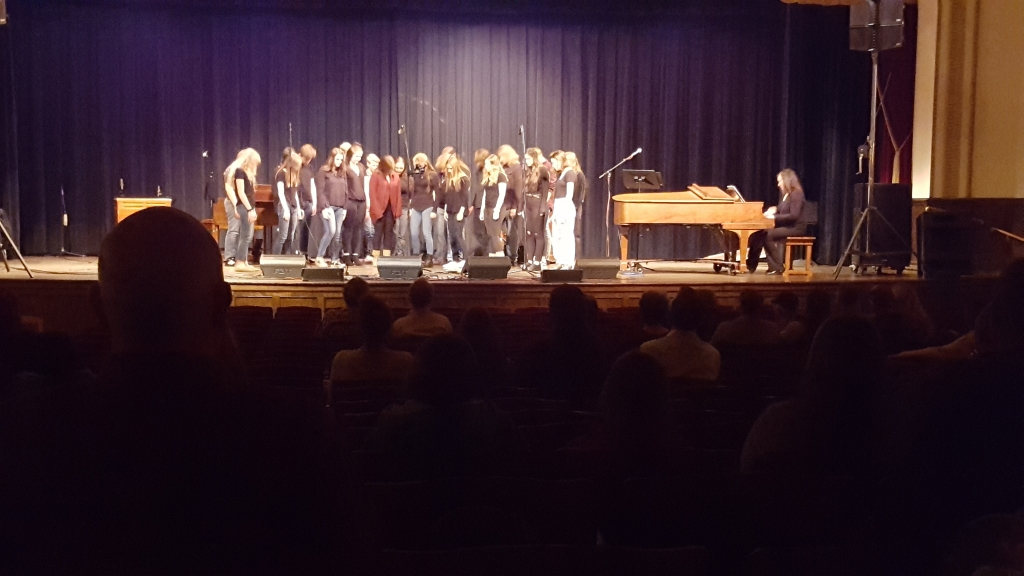 Hematites in Harmony did a great job with their performance.