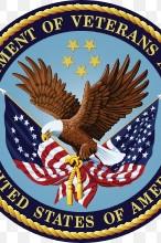 Iron Mountain VA Wins National Best Patient Experience Award July 24, 2020
